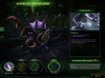 SC2 - Heart of the Swarm - 10