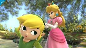 Super Smash Bros Toon Link U 00