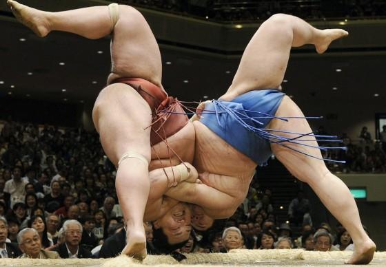 Luchadores Sumo cayendo 00