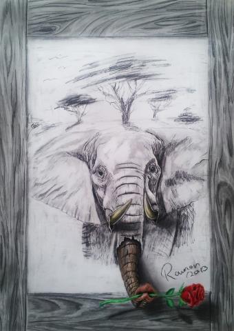 Trompa elefante 3D