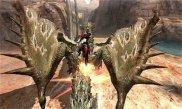Monster Hunter X 06